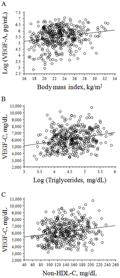 The correlation of circulating vascular endothelial growth factor-A (VEGF-A) or C (VEGF-C) levels with their independent determinants. A. The correlation between circulating VEGF-A levels and the body mass index. B. The correlation between those of VEGF-C and those of triglycerides. C. The correlation between those of VEGF-C and those of non-high-density-lipoprotein cholesterol (nonHDL-C).