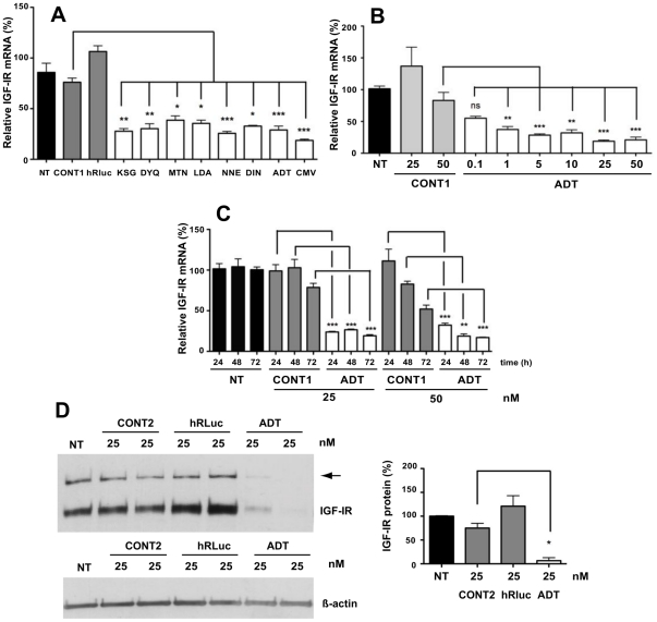 siRNAs targeted to mouse IGF-IR in breast cancer cells. ( A ) The effect of siRNAs (10 nM) designed against IGF-IR coding regions was measured by qRT-PCR 24 h post-transfection in EMT6 cells. ( B ) Dose-dependent inhibition of IGF-IR mRNA levels by ADT siRNA into EMT6. ( C ) Kinetics of silencing by ADT siRNA in EMT6 cells. Black bars represent mock transfected cells (NT). Means ± SEM of two independent experiments with independent transfected quadruplicates were shown; * P