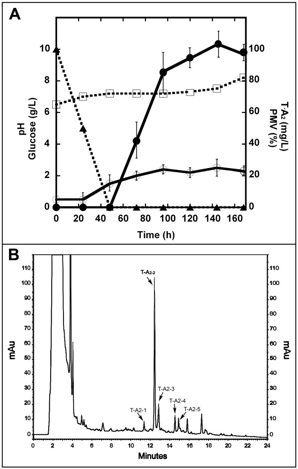 Fermentation of A. teichomyceticus ATCC 31121 at flask scale in TM1 medium . In ( A ), time courses of pH (□, dashed line), glucose (▲, dashed line), growth curve measured as PMV (○, solid line), and T-A 2 production (●, solid line). In ( B ), HPLC profile of 144-hour sample showing the following complex composition: T-A 2-1 , T-A 2-2 , T-A 2-3 , T-A 2-4 , and T-A 2-5 represent 7.3, 60.2, 13.1, 9.1, and 10.3% of the total T-A 2 .