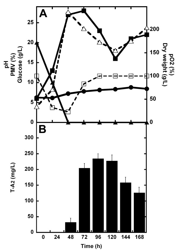 Growth and teicoplanin production in 3-L batch fermentations of A. teichomyceticus ATCC 31121 in TM1 . The pH value was naturally self-regulated ( i.e ., it was not controlled by adding acid/base during the fermentation), whereas the pO 2 was controlled over the 20% of saturation by adjusting agitation speed. In ( A) , time courses of pH (●, solid line), pO 2 (□, dashed line), glucose (▲, solid line), and growth curve measured as dry weight (Δ, dashed line) and PMV (■, solid line). In ( B ), production of T-A 2 measured by HPLC analysis as mg/L (filled bars).