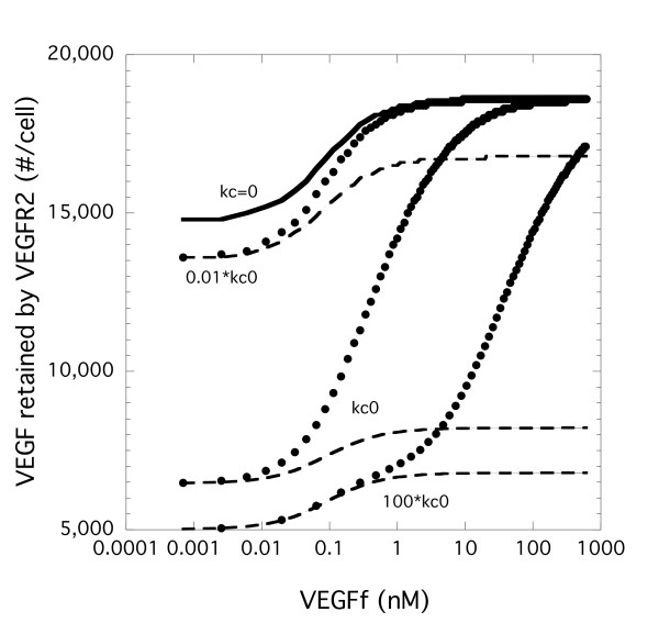 Coupling rate constant between VEGFR1 and NP-1 impacts VEGF binding to VEGFR2 . Simulations were performed with Model 1 (VEGFf can bind to VEGFR1 and NP-1 - dashed line) and Model 2 (VEGFf cannot bind to VEGFR1 and NP-1 - filled circles) with VEGF (0.023 nM) and variable VEGFf for 3 h using base parameter values except for the coupling rate between VEGFR1 and NP-1. Total VEGFR2 bound to VEGF (surface and internal) is shown. kc0 is the base value shown in Table 2. kc = 0 is equivalent for both models and is shown in the solid line.