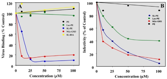 Effect of SLPE and LPE on rotavirus binding and infectivity of MA104 cells. ( A ) Virus (RV TLP) binding and ( B ) infectivity of MA104 cells in the presence and absence of various concentrations of SLPE, LPE, and other lipids or neoglycoconjugates were measured as described in the Experimental Section. (●), PE; ( ), LPE; ( ), SLPE; ( ), NGcGM 3 ; ( ), Sialyllactose-BSA (SL-BSA). SL-BSA concentrations are based on µM equivalent of sialic acid.