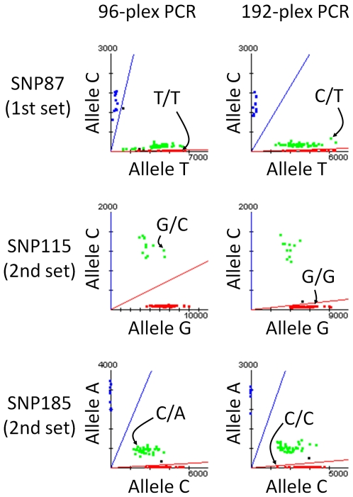 Scatter plots for three SNPs with 3 discordant genotypes. Scatter plots in genotyping with 192-plex PCR and 96-plex PCR are depicted side-by-side. The genotypes of discordant samples are indicated in the scatter plots by arrows.
