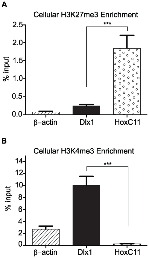 Validation of ChIPs for (A) H3K27me3 and (B) H3K4me3. Chromatin from uninfected mouse fibroblasts was immunoprecipitated using anti-H3K27me3 antibody. The specificity of the ChIPs was assessed by measuring the %Input by Q-PCR at HoxC11, Dlx1 and β-Actin. Each graph displays the mean value and S.E.M. for each queried locus, with data from four independent ChIPs. *** P value