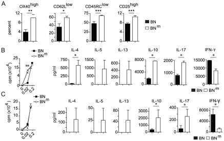 BN m rats exhibit spontaneous T cell activation and skewed cytokine production. (A) Proportions of OX40 high , CD62L low , CD45RC low and CD25 high among CD4 T cells from spleens of BN (n = 4) and BN m (n = 8) rats. (B) Proliferation was assessed by [3H] Thymidine uptake in total CD4 T cells isolated from BN (n = 4) and BN m (n = 4) spleens after stimulation for 48 hours with anti-TCR mAb and increasing concentrations of anti-CD28 mAb (left panel). Cytokine production by CD4 T cells stimulated with anti-TCR mAb and 0.2 µg/ml of anti-CD28 mAb for 48 hours (right panels). (C) Proliferation (left panel) and cytokine production (right panels) by naive CD62L+ CD4 T cells isolated from BN (n = 4) and BN m (n = 4) spleens and stimulated as described above. Data are representative of three independent experiments. (BN: black columns, BN m : white columns).