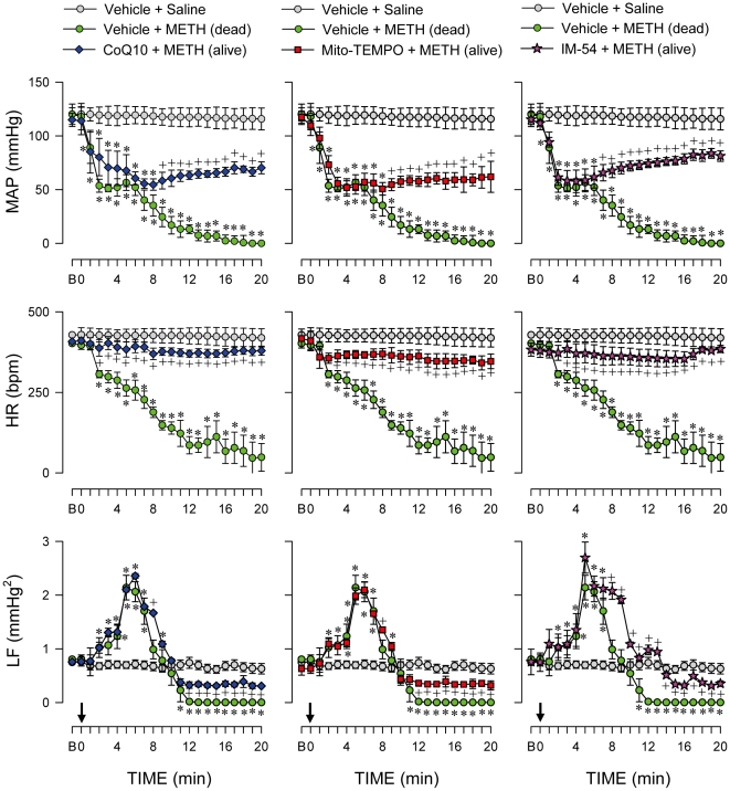 Oxidative stress in RVLM underlied methamphetamine-elicited cardiovascular collapse. Temporal changes in MAP, HR or power density of the LF component of systolic blood pressure signals in rats that received saline, died of METH (24 mg/kg, i.v.) or survived with pretreatment by microinjection of CoQ10 (7 nmol), Mito-TEMPO (500 pmol) or IM-54 (3 pmol) into bilateral RVLM prior to METH administration. Values are mean ± SEM, n = 6–37 animals per experimental group. * P