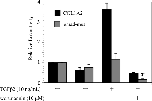 Effects of <t>wortmannin</t> on TGF-β2-induced Smad-mut/Luc promoter activity in ARPE-19 cells. Transfected cells were pretreated with or without wortmannin and incubated in the presence or absence of TGF-β2 (10 ng/ml) for 24 hours. Results are expressed relative to untreated control cells. Values represent the means ± SD of three independent experiments. * P