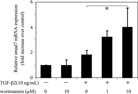 Effects of wortmannin on TGF-β2-induced Smad7 mRNA expression. Quiescent cell were pretreated with or without wortmannin and incubated in the presence or absence of TGF-β2 (10 ng/ml) for 24 hours. The relative levels of mRNA were normalized against GAPDH from the same cDNA preparation. Values represent the means ± SD of three independent experiments. * P