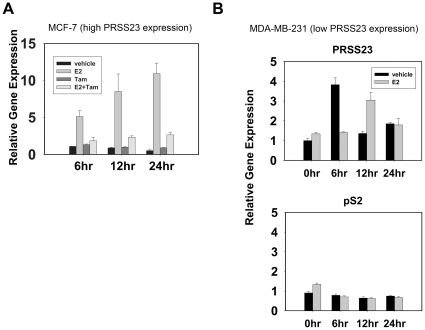 E 2 -activated ERα enhances PRSS23 expression in MCF-7 cells. A. MCF-7 cells were treated with 1 nM E 2 , 25 ppm ethanol, 5 µM Tam, and 0.5% dimethyl sulfoxide (DMSO) in phenol-red-free culture medium containing 10% CDS-FBS for 24 h. The bar plots depicted the results of time-lapse profiling of PRSS23 mRNA levels at 6, 12, and 24 h. All experiments were performed in triplicate. The bars represent relative expression levels of PRSS23 after treatment, which was normalized to the level of 6 h-treated cells (mean ± S.E.M.). B. MDA-MB-231 cells were treated with 1 nM E 2 in phenol-red-free culture medium containing 10% CDS-FBS for 24 h. Expression of PRSS23 (upper panel) and pS2 (lower panel) was evaluated by qRT-PCR at 0, 6, 12, and 24 h. The bars represented the gene expression levels of PRSS23 after treatment, which was normalized to the level of untreated cells (mean ± S.E.M.).