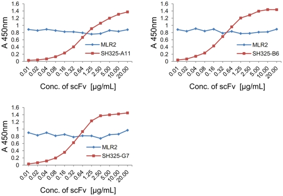 Competition ELISA for epitope overlapping. 100 ng of mouse p75NTRex-Fc fusion protein was immobilized in plates for each well. Serial diluted p75NTR-specific scFvs were added and incubated for 1.5 hr at 37°C. After 3× washing with PBST, the plates were incubated with mouse anti-p75NTR mAb (MLR2, 1∶5,000) for 1.5 hr at 37°C. The plate was washed 3× with PBST. The scFvs and mouse anti-p75NTR mAb (MLR2) were detected by mouse anti-His 5 mAb HRP conjugated (1∶5,000) and goat anti-mouse IgG HRP conjugated (1∶5,000) in corresponding plates.