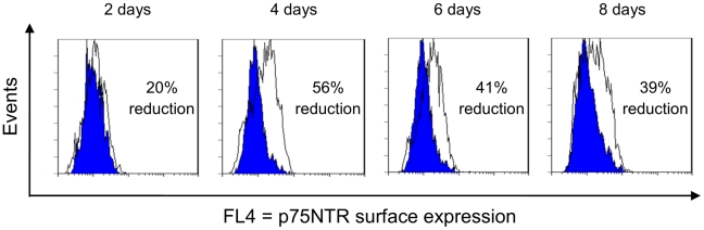 Kinetics of the p75NTR knockdown effect in PC12 cells. PC12 cells were transiently transfected with SH325-G7-KDEL or the control α phOx-KDEL and harvested at different time points. The p75NTR surface expression levels were determined with mouse anti-p75NTR mAb (MLR2, 1∶200) followed by goat anti-mouse IgG F(ab′) 2 fragment APC conjugated (1∶200). The blue histograms represent the p75NTR surface expressions of the PC12 cells expressing SH325-G7-KDEL. The white histograms represent the p75NTR surface expressions of the PC12 cells expressing α phOx-KDEL. The efficiency of knockdown p75NTR surface expression is indicated in percent.