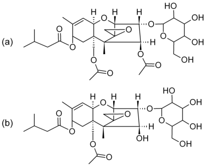 .Proposed chemical structures for ( a ) T-2 toxin (m.w. 628.7) and ( b ) HT-2 toxin (m.w. 586.6) glucosides.
