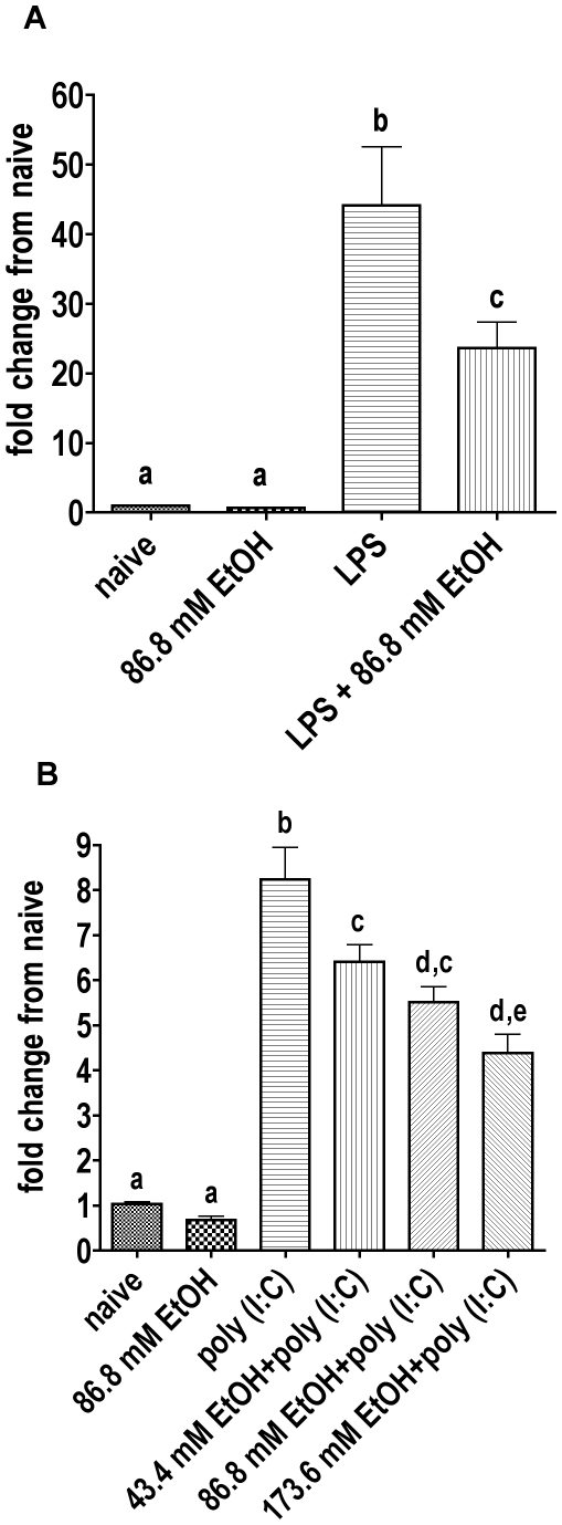 Real time RT-PCR with mRNA isolated from RAW264.7 cells treated with ethanol and LPS or poly I:C. Naive groups received no treatment. A Appropriate groups were treated with ethanol for 30 min, then with LPS for further two hours. The average of two experiments, each with three replicates, were pooled. Each sample replicate was doubled in the PCR plate. 86.8 mM ethanol significantly reduced the LPS induced TNF-α mRNA expression (P