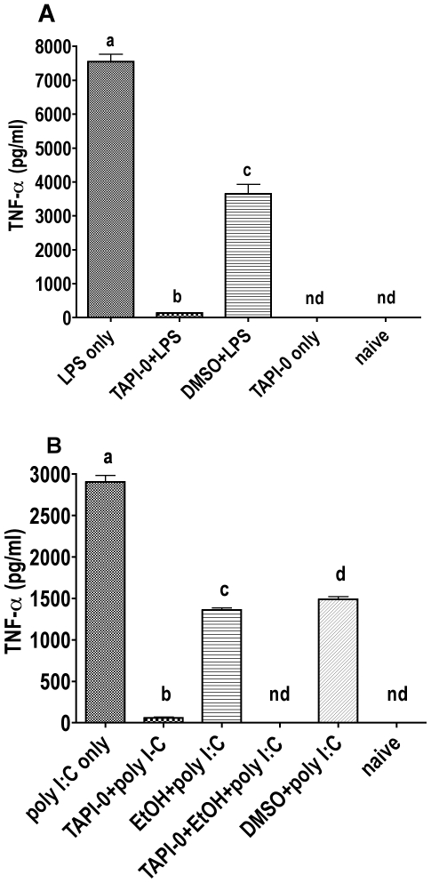 Effect of TACE inhibition on the LPS and poly I:C induced TNF-α response in RAW264.7 cells. TNF-α levels were measured by ELISA from cell culture medium immediately after collection. Each group contained 6 samples. Naive groups received no treatment. A Cells were treated with 25 µg/ml TAPI-0, 5 µl/ml DMSO, and/or 100 ng/ml LPS. Treatments were given at the same time point and cells were incubated 2 h. B Appropriate groups were treated with 86.8 mM EtOH and incubated 30 min. Cells were treated with 25 µg/ml TAPI-0, 5 µl DMSO, and/or 50 µg/ml poly I:C, and incubated further 2 h. Bars with no shared letters are significantly different (p