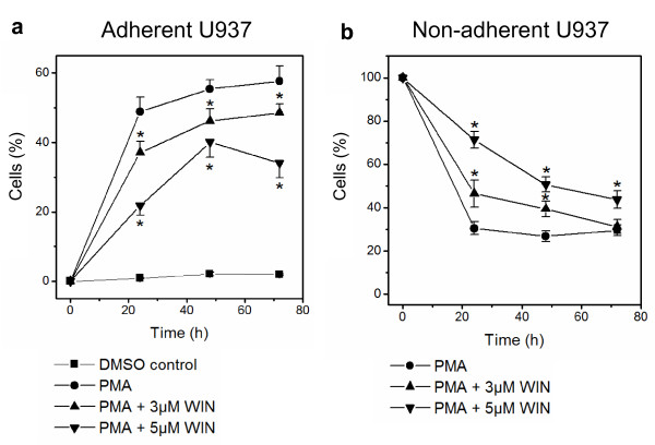 WIN55212-2 inhibited differentiation of human monocytic U937 cells into an adherent phenotype . Differentiation of U937 cells was induced by 25 nM PMA with or without co-incubation with WIN55212-2. The experimental groups were: 1.) Vehicle control = treatment with 0.1% DMSO only, 2.) Differentiation control = treatment with 25 nM PMA, 3.) Experimental groups were treated additionally with 3 μM or 5 μM WIN55212-2, respectively. Adherent (figure 1a) and non-adherent cells (figure 1b) were separated and quantified after different time points up to 72 h by FACS analysis. Percentage of control group at time point zero is shown. Data are shown as mean +/- SEM, n = 12; *p