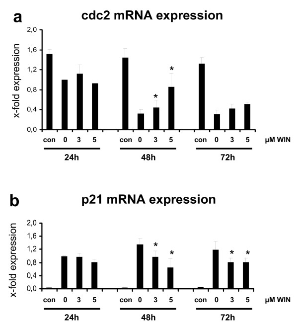 Quantitative real time PCR analysis of cdc2 and p21 mRNA expression in PMA-induced U937 cells co-incubated with WIN55212-2 . Differentiation of U937 cells was induced by 25 nM PMA with or without co-incubation with WIN55212-2. The experimental groups were: 1.) Vehicle control = treatment with 0.1% DMSO only (con) , 2.) Differentiation control = treatment with 25 nM PMA (0) , 3.) Experimental groups were treated additionally with 3 μM (3) or 5 μM (5) WIN55212-2, respectively. cdc2 (figure 7a) and p21 (figure 7b) mRNA expression were analysed after different time points by quantitative real-time PCR. Data are shown as mean +/- SEM, n = 3. Relative expression were normalized to GAPDH expression in non-induced cells. *p