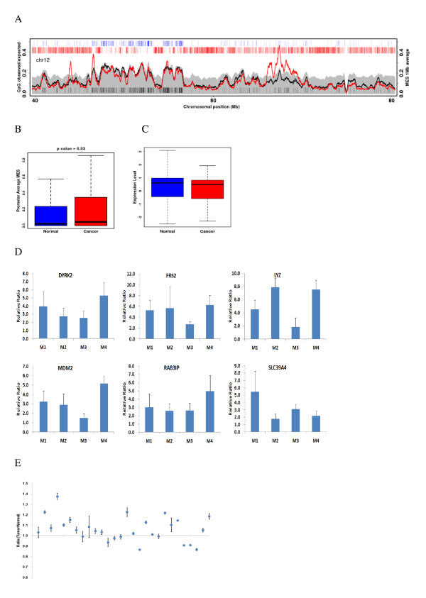 DNA methylation of LRES regions . (A) Average MES curve for LRES regions in chromosome 12 in normal (black) and cancerous (red) tissue. (B) Average MESs for gene promoters in LRES regions in normal and cancerous tissue. (C) Correlation between gene expression levels and hypermethylation of genes within LRES regions. (D) Methylation enrichment of several selected genes within LRES regions, as assessed by <t>MIRA-qPCR.</t> (E) Methylation ratio at the target site within the upstream region of <t>MDM2</t> , as measured by pyrosequencing.
