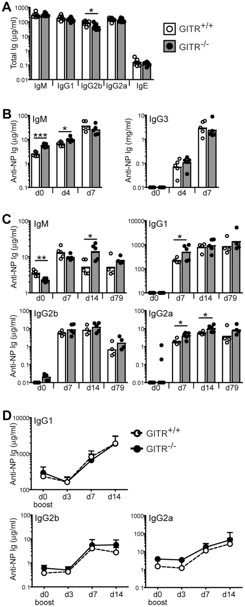GITR-deficient mice mount relatively normal antibody responses to model antigens. (A) Total serum levels of IgM, IgG1, IgG2b, IgG2a and IgE in 4 month-old GITR +/+ (129S1 strain, white bars, empty circles) and GITR −/− mice (gray bars, filled circles). n = 7. (B) GITR +/+ (129S1, white bars, empty circles) and GITR −/− (grey bars, filled circles) mice ( n = 5 per group) were immunized i.p. with 5 µg NP 28 -FICOLL. Sera were collected before (day 0) and 4 and 7 days after immunization, and NP-specific IgM and IgG3 were measured by ELISA. (C) GITR +/+ (129S1, white bars, empty circles) and GITR −/− (grey bars, filled circles) mice ( n = 5 per group) were immunized i.p. with 100 µg NP 36 -CGG in Alum. Sera were collected at indicated time points and NP-specific IgM, IgG1, IgG2b and IgG2a were measured by ELISA. (D) Mice described in (C) were boosted with 5 µg/ml NP 36 -CGG injected i.p. 178 days after primary immunization, and sera were collected at indicated times after boost. NP-specific IgG1, IgG2b and IgG2a were measured by ELISA ( n = 4 per group). Bars and circles represent geometric means and individual mice, respectively. * p
