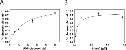 Substrate–velocity curves of recombinant β - GT. (A) Recombinant β-GT activity with UDP-[ 3 H]glucose substrate. Glucosylation reactions were conducted at UDP-[ 3 H]glucose substrate concentrations of 0, 2.5, 5, 10, 25, and 50 μM and fixed enzyme and 5-hmC DNA concentrations of 0.01 and 2.5 μM, respectively. Product formation is plotted vs substrate concentration, and nonlinear regression was performed to determine K m UDP-glucose values. (B) Recombinant β-GT activity with a 5-hmC DNA substrate. Glucosylation reactions were conducted with 5-hmC DNA substrate concentrations of 0, 0.125, 0.25, 0.5, 1, 3.6, and 7.2 μM and fixed enzyme and UDP-[ 3 H]glucose concentrations of 0.01 and 50 μM, respectively. Product formation is plotted vs substrate concentration, and nonlinear regression was performed to determine K m 5-hmC values.