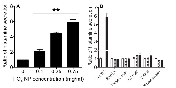 Measurement of histamine secretion evoked by TiO 2 NPs . (A) ELISA quantification of histamine release from RBL-2H3 cells after TiO 2 NP (0.1 mg/ml-0.75 mg/ml stimulation) in normal Hanks' solution (n ≥ 3, **p