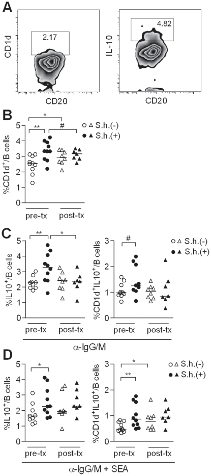 Presence of IL-10-producing CD1d hi B cells during S. haematobium (S.h.) infection. (A) The CD1d hi B cells and the IL-10 production of the total B cells were gated according to the gating strategy depicted in this graph. The gating of the IL-10 production of the different Breg subsets is similar as the total B cell gating. (B) PBMC were fixed and stained for Breg markers, including CD1d, and analyzed by flow cytometry. (C) Total peripheral blood B cells were cultured with anti-IgG/IgM or (D) anti-IgG/IgM plus SEA (10 µg/ml) for two days. Intracellular IL-10 production of the total B cells and the CD1d + B cells was determined following PMA/Ionomycin/LPS and BrefA stimulation.