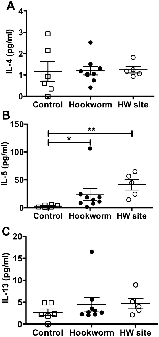 Production of Th2 cytokines in the duodenal mucosa of hookworm infected individuals. Duodenal biopsies from Trial 1, taken from either the duodenum at week 20 post-infection or from directly adjacent to an adult hookworm attachment site (HW site – determined by endoscopy) at week 21 in the hookworm group only, were cultured for 24 h in tissue culture medium at 37°C with 95% O 2 /5% CO 2 . Cell supernatants were removed and levels of IL-4 (A), IL-5 (B) and IL-13 (C) were determined using a <t>Cytometric</t> Bead Array. Data were analysed by Mann-Whitney U test.