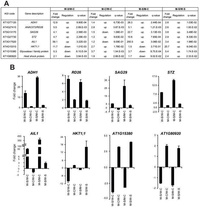 Confirmation of microarray data by qRT-PCR analysis. Eight genes were selected and their expression profiles were assessed by qRT-PCR in all four plant samples to verify the microarray data. (A) Fold changes were obtained from microarray analysis. (B) Fold changes were obtained from qRT-PCR analysis. Fold changes were calculated from the expression data obtained by qRT-PCR in all four samples. Relative quantitation of expression was calculated using 2 −ΔCt method and UBQ10 as endogenous control. cDNAs were obtained from three biological replicates.