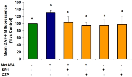 Participation of CB1 and TRPV1 in NO production during bull sperm capacitation by AEA. Sperm samples were incubated for 60 min at 38.5°C in 0.3% BSA sp-TALP containing 0.1 mM L-Arginine and 5 µM of DAF-FM diacetate and untreated (control) or treated with MetAEA (1.4 nM) and/or SR141716A (SR1: CB1 antagonist (0.1 nM)) or Capsazepine (CZP: TRPV1 antagonist (10 nM)). Spermatozoa were fixed and the fluorescent complex was measured by flow cytometry. Fluorescence data are expressed as mean fluorescence (percentage of control at 45 min incubation, control adjusted to 100%). Data are expressed as mean ± SEM (n = 5). a≠b, p