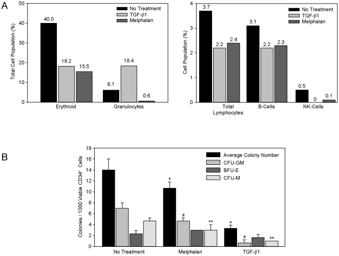Melphalan or rTGF-β1 exposure diminished the ability of HOB to support CD34+ bone marrow cells. A ) To evaluate HOB support of CD34+ bone marrow cells, HOB cells were exposed to melphalan [25 µg/ml] or rTGF-β1 [10 ng/ml] for 24 hours. After the 24 hour exposure, the HOB were thoroughly rinsed and CD34+ cells (8.8×10 5 ) were added in co-culture. Recombinant IL-3 (100 ng/ml) was added in all groups. CD34+ cells were collected after co-culture for 48 hours and the samples were analyzed for the expression of cell surface markers. B ) HOB were exposed to melphalan [50 µg/ml] or rTGF-β1 [10 ng/ml] for 24 hours. The HOB layers were rinsed and CD34+ bone marrow cells (1.75×10 5 ) were added in co-culture for 48 hours. The CD34+ cells were collected from the HOB layers, viability determined, and 1×10 3 viable CD34+ bone marrow cells were added to methocult containing factors for myeloid lineage in triplicate. Colonies were counted and scored after 7 days in culture. *p