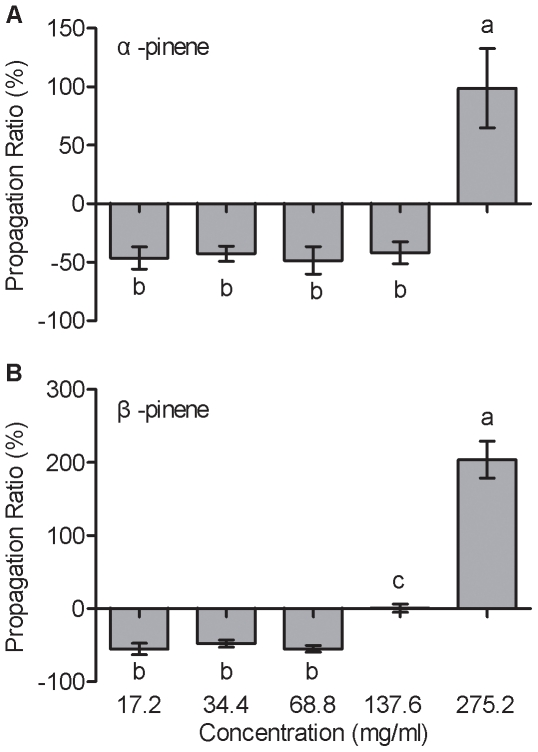 Propagation responses to different concentrations of α-pinene and β-pinene by pinewood nematode (PWN) using the cotton ball bioassay. (A) α-pinene (17.2, 34.4, 68.8, 137.6, and 275.2 mg/ml), (B) β-pinene (17.2, 34.4, 68.8, 137.6, and 275.2 mg/ml). Each data bar represents the mean of eight independent replicates, and error bars represent standard errors of the mean. Different lowercase letters above or below bars indicate significant differences (Tukey's multiple comparison test; p