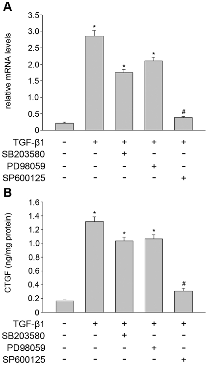 SP600125 inhibited TGF-β1 induced CTGF expression and secretion in THSF cells. THSF cells were pretreated with ERK inhibitor (PD98059, 30 µM), p38MAPK inhibitor (SB203580, 10 µM) or JNK inhibitor (SP600125, 30 µM) for 1 hour, respectively. Subsequently they were treated with TGF-β1 (3 ng/ml) for 24 hour. (A) CTGF mRNA expression levels were detected by real time PCR. (B) CTGF protein was measured in conditioned medium samples using ELISA and results were normalized for total protein concentration. Data are representative of tree independent experiments. *, P