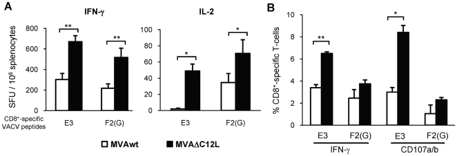 Immunogenicity of MVAΔC12L in BALB/c mice. Groups of four BALB/c mice were i.p immunized with 5×10 7 pfu of MVAwt (white bars) or MVAΔC12L (black bars), and seven dpi specific-CD8 + T-cell responses against the E3 and F2(G) VACV peptides were evaluated in the spleen. ( A ) The magnitude of the specific responses was measured by IFN-γ (left) and IL-2 (right) Elispot assays. Background (RPMI negative control) subtracted results are depicted as mean spot forming units (SFU) per 10 6 splenocytes ± SD. ( B ) Quality of the response analyzed by ICS. Degranulation of specific-CD8 + T-cells was assessed with CD107a/b mAb (cytotoxicity marker) simultaneously with IFN-γ production, after 5 hr of stimulation with VACV peptides Results are expressed as mean % CD8 + T-cells ± SD. Statistically significant differences: *p