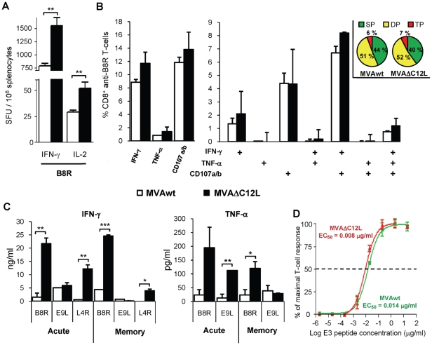 Quality characterization of the specific T-cell anti-VACV immune response. ( A ) Groups of four C57BL/6 mice were i.m immunized with 10 7 pfu of MVAwt (white bars) or MVAΔC12L (black bars), and seven dpi the magnitude of the T-cell response against B8R peptide in the spleen was measured by <t>IFN-γ</t> and IL-2 Elispot assays and ( B ) degranulation of specific-CD8 + T-cells was assessed with CD107a/b staining simultaneously with IFN-γ and TNF-α production by ICS, after 5 hr of stimulation with B8R peptide. Analysis of the total B8R specific-CD8 + T-cells expressing each of the functions (left panel) and polyfunctionality of the specific-CD8 + T-cells were performed (right panel). Bars represent the frequency of CD8 + T-cells expressing the particular combination of functions indicated on the x axis. Results are expressed as mean % CD8 + anti-B8R T-cells ± SD. Each pie chart represents the mean contribution of each effector function to the total response. Green sectors stand for CD8 + cells positive for only one function (SP), yellow sectors stand for bifunctional CD8 + cells (DP), and red sectors stand for trifunctional cells (TP). ( C ) Groups of four C57BL/6 mice were i.m immunized with 10 7 pfu of MVAwt or MVAΔC12L and 7 (acute) or 35 (memory) dpi, specific cytokine production in splenocyte-culture supernatants was evaluated by ELISA after 72 hr stimulation with the indicated peptides. ( D ) Splenocytes from BALB/c mice i.m immunized with 10 7 pfu of MVAwt (green) or MVAΔC12L (red) were assayed by IFN-γ Elispot against serial dilutions of VACV E3 peptide. T-cell functional avidity is defined as the concentration required to achieve half-maximal of the response (EC 50 ). Data represents the percentage of the maximal response (net number of SFU per 10 6 cells stimulated with a peptide concentration of 20 µg/ml). Statistically significant differences: *p