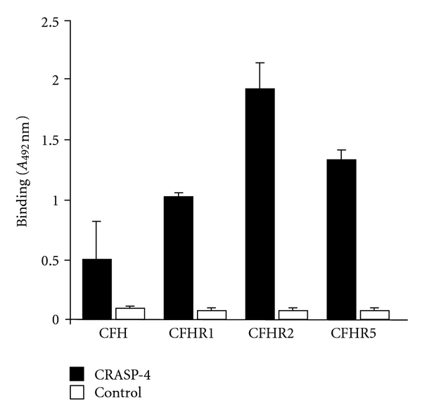 CRASP-4 binds distinct complement proteins. Binding of equimolar amounts of CFH, CFHR1, CFHR2, and CFHR5 (33 μ M) to immobilized CRASP-4 (5 μ g/mL) was analyzed by ELISA. Bound CFH or CFHR proteins were detected with either goat CFH polyclonal antiserum or mouse CFHR1 monoclonal antiserum (JHD 7.10), which reacts with all three CFHRs. Data represent the means and standard errors from three separate experiments.