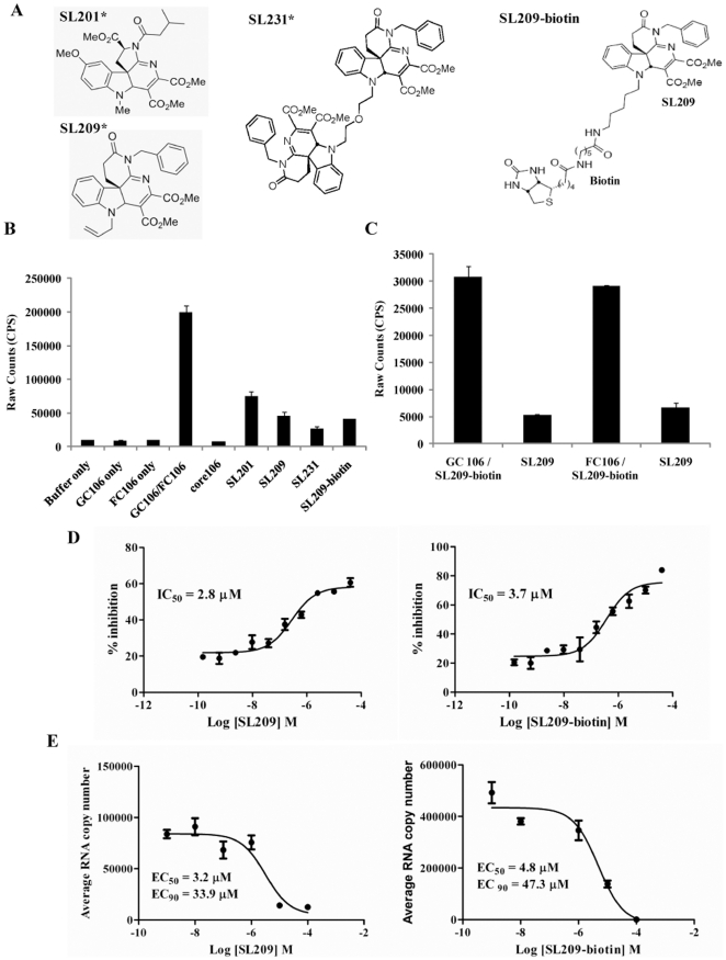 """Inhibition of core dimerization and of virus production by SL209-biotin and evidence for direct binding to core protein. In an AlphaScreen assay, glutathione-coated donor beads and anti-flag antibody coated acceptor beads (20 µg/ml each) were used to monitor the dimerization of GST- and Flag- tagged core106 proteins. GST-core106 (GC106) and Flag-core106 (FC106) were used at 150 nM each and core106 was used at 1 µM as a reference inhibitor. A: Structures of SL201, SL209, SL231, and SL209-biotin. SL201, is a 513 Da small molecule inhibitor originally identified to inhibit HCV core dimerization and virus production. SL209, is a SAR analogue of SL201. SL231, is a dimer of SL209. SL209-biotin is a biotinlyated derivative of SL209. """"*"""" indicates that structures of SL201, SL209, and SL231 have been previously published in Wei et al 2009 [24] , Strosberg et al 2010 [15] , and Ni et al 2011 [23] . B: Levels of inhibition. Core106 inhibited 91% and small compounds inhibitors: SL201, SL209, SL231 and SL209-biotin used at 15 µM inhibited respectively 66%, 74%, 83%, and 75% of core dimerization. C: Direct binding to GST-core106 (GC106) or Flag-core106 (FC106). In a novel AlphaScreen format GC106/SL209-biotin and FC106/SL209-biotin were mixed in 1∶1000 ratio and incubated. Streptavidin donor beads and glutathione coated acceptor beads at 20 µg/ml were used in the detection of the binding. Free SL209 at 50 µM inhibited 83% of SL209-biotin binding to GC106 and 77% of SL209-biotin binding to FC106. D: Dose response analyses. Inhibition levels were analyzed in a dose response format. The compounds were dosed from 160 µM to 150 pM. The IC 50 values for SL209 (right panel) and SL209-biotin (left panel) were calculated as 3.7 µM and 2.8 µM using GraphPad Prism. E: Inhibition of HCV production. Inhibition of HCV production in Huh-7.5 cells by SL209 and SL209-biotin was analyzed by adding serially diluted the compounds (individually) and virus onto naïve Huh-7.5 cells. The supernatants of"""