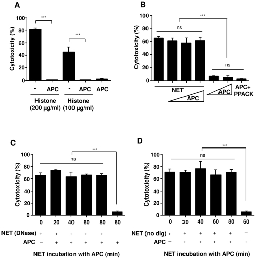APC decreases epithelial cytotoxicity induced by histones but not by NET. (A) Histones (200 or 100 µg/ml), pre-incubated for 1 h at 37°C in the absence or presence of 100 nM human APC, were incubated with A549 cells for 16 h, followed by analysis of cytotoxicity. (B) NET were incubated with APC (mass ratio APC: NET proteins, 1∶5, 1∶2 and 1∶1) or without APC for 1 h at 37°C, followed by incubation with A549 cells for 16 h and measurement of cytotoxicty. APC alone or active-site blocked APC (APC+PPACK) were incubated with A549 cells for control. (C) DNase-digested and (D) undigested forms of NET were pre-incubated with 100 nM APC for 20 to 80 min before incubation with A549 cells for 16 h, followed by determination of cytotoxicty. Shown are representative data of four independent experiments (mean SD), *** p