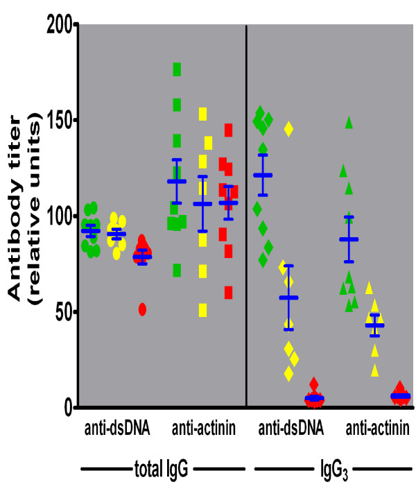 Serum auto-antibody activity for dsDNA or α-actinin assessed by ELISA . Serum samples from γ3 +/+ (green), +/- (yellow), and -/- (red) mice were tested for binding of total IgG (left panel) to double stranded (ds) DNA (circles) or to α-actinin (squares), and for binding of IgG3 (right panel) to dsDNA (diamonds) or to α-actinin (triangles).