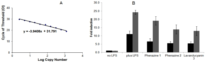 Effect of phenazines on COX-2 (black) and iNOS (gray) mRNA expression in RAW 264.7 cells. Total RNA was isolated using the TRIZOL ® Reagent method (Invitrogen) from RAW 264.7 cells (2 × 10 5 cells/well) after treatment with samples. cDNA was synthesized using the RT 2 First Strand Kit (C-03, SA Biosciences) protocol. cDNA was used for quantitative real time PCRs with fluorescent Power SyBR ® Green PCR master mix (Applied Biosystems), employing GAPDH , iNOS , COX-2 specific primers, and a 7300 Real Time PCR System (Applied Biosystems). The results were derived from two independent RNA preparations employing identical triplicates in each analysis and quantitated using GAPDH as the internal control, following the manufacturer's instructions. ( A ) GAPDH standard curve for quantitation of iNOS and COX-2 expression; ( B ) Levels of COX-2 (black) and iNOS (gray) mRNA expression. The concentration and duration of treatment had no significant effect on the viability of Raw 264.7 cells.