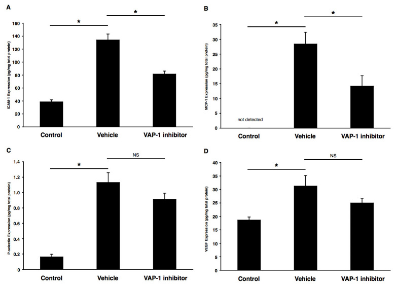 Impact of VAP-1 blockade on inflammation-associated molecules. Bars indicate the average protein levels of ( A ) ICAM-1, ( B ) MCP-1, (C) P-selectin, and ( D ) VEGF in the RPE-choroidal complex obtained from laser-induced CNV animals treated with vehicle or VAP-1 inhibitor at 3 days after laser photocoagulation. Values are mean±SEM (n=9 to 10). *, p
