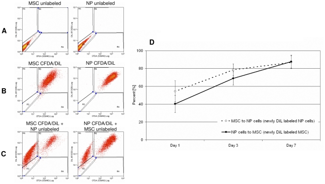 Transfer of membrane components during direct co-culture of MSC and NP cells. A–C: Exemplar flow cytometry to quantify transfer of membrane (DiL) components after 7 days. A) Dot plots for unlabeled MSCs and NP cells. B) Dot plots for CFDA and DiL labeled MSCs and NP cells. C) Dot plots for CFDA and DiL double labeled MSCs co-cultured with unlabeled NP cells; CFDA and DiL double labeled NP cells co-cultured with unlabeled MSCs. D) Percentages of DiL transfer after 1, 3 and 7 days from a labeled cell to an unlabeled cell during direct co-culture calculated from flow cytometry data. Error bars indicate standard error of the mean. Abbreviations: MSC: mesenchymal stem cell; NP: nucleus pulposus; CFDA: 5,6 carboxyfluorescein diactetae, succinimidyl ester; DiL: Vybrant CM-DiL cell-labeling solution.