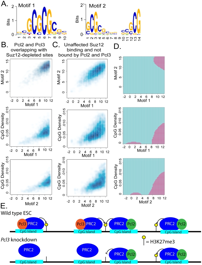 Pcl2 and Pcl3 localize to CpG islands. (A) The 500 bp central regions of Pcl3 ChIP-seq peaks were scanned for enriched motifs by using a 9th order Markov background dependence model [86] . Two examples of 10- and 14-mer enriched motifs are shown. (B–C) Smoothed scatter plots of maximum position specific-scoring matrix (PSSM) scores for the two motifs and CpG density are shown for (B) Suz12 binding sites depleted upon Pcl3 knockdown overlapping with Pcl2 and Pcl3 and (C) Suz12 binding sites unaffected upon Pcl3 knockdown and that do not overlap with Pcl2 and Pcl3. (D) Shown are the decision boundaries of a support vector machine classifier using these three features, where the purple regions correspond to Suz12 co-localizing with Pcl2 and Pcl3. The predictor had a cross validation accuracy of 75%. (E) A model of Pcl3 and Pcl2 regulation of PRC2 binding and activity. In wild type ESCs, Pcl3 promotes PRC2 binding and H3K27me3. Pcl2 antagonizes Pcl3-mediated Suz12 binding at sites bound by both but promotes PRC2 function at sites solely regulated by Pcl2. Knockdown of Pcl3 causes decreased PRC2 binding and H3K27me3. Pcl2 does not compensate at Pcl2 and Pcl3 targets and continues to inhibit or promote PRC2 function depending on the gene.