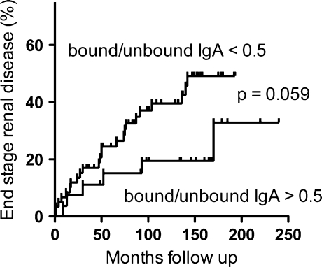 Indication of increased rate of disease progress to end stage renal disease for IgAN patients with low galectin-8 bound/unbound IgA ratio. Kaplan–Meier cumulative analysis of end stage renal disease for 87 IgAN patients, divided according to the ratio of galectin-8N bound/unbound IgA with a cutoff at a ratio 0.50 based on the mean in the control group. Patients with a ratio > 0.50 may have better early (the first 9 years) renal survival than patients with a binding ratio
