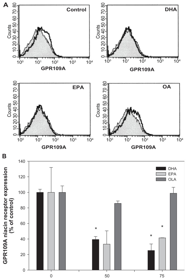 Effect of fatty acids on GPR109A niacin receptor expression in THP-1 macrophages. Notes: Macrophages were treated with 50 or 75 μM DHA, EPA, and OLA for 24 hours prior to stimulation with niacin (30 minutes). Cells were labeled with phycoerythrin-conjugated GPR109A and expression of GPR109A was determined using a FACSCalibur flow cytometer as described in the text. ( A ) Filled histograms represent the isotype control and open histograms represent GPR109A. Data is representative of the 75 μM treatments. ( B ) Data were quantified as the percent change of mean fluorescent intensity. Values are the means ± the standard deviations of three independent duplicate experiments. Results are analyzed using ANOVA, followed by pair-wise comparisons with the Bonferroni adjustment. * P