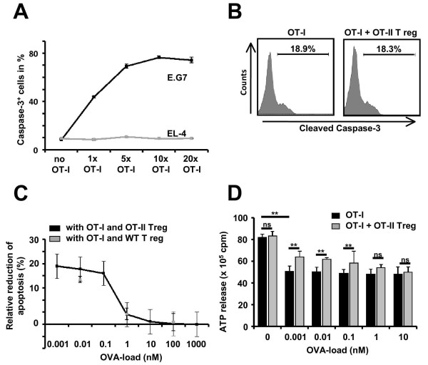 Suppression of cytotoxicity by OT-II T reg cells depends on the strength of the antigen stimulation of OT-I T cells in a cell coculture system . (A) Ratio of apoptotic cleaved caspase-3 + EG.7 and EL-4 cells after 6 h of cocultivation with activated OT-I T cells at different ratios in the absence of externally applied OVA 257-264 (n = 6, respectively). (B) Representative flow cytometry analysis of cleaved caspase-3 levels in EG.7 cells cocultured for 6 h at a ratio of 1:1 with activated OT-I T cells in the absence (left panel) and the presence (right panel) of OT-II T reg cells at a ratio of 2:1 (cleaved caspase-3 + EG.7 cells: no OT-I T cells: 6.5 ± 1.3%; OT-I T cells: 18.9 ± 2.7%; OT-I T cells + OT-II T reg cells: 18.3 ± 3.4%; P = 0.864; n = 4). (C) OVA 257-264 concentration dependence of the OT-II T reg and wild-type T reg cell-mediated reduction of cleaved caspase-3 + EL-4 cells induced by activated OT-I T cells (ratio OT-I to T reg: 2:1; ratio OT-I to EL-4: 1:1). At low OVA 257-264 concentrations (0.001 to 1 nM) OT-II T reg cells and wild-type T reg cells caused significant reduction of activated OT-I T cell-induced cleaved caspase-3 + EL-4 cells (n = 6, respectively). At high OVA 257-264 concentrations (10 to 1,000 nM) neither OT-II T reg cells nor wild-type T reg cells exerted any suppressive effect (n = 6, respectively). (D) OVA 257-264 peptide concentration dependence of intracellular ATP levels (detected following cell lysis) as a measure of cell viability in EL-4 cells following 4 h of cocultivation with activated OT-I T cells (ratio 1:1) in the absence and presence of OT-II T reg cells (ratio 2:1). At low OVA 257-264 concentrations (0.001 to 0.1 nM) significantly higher intracellular ATP levels in EL-4 cells (ratio 1:1) were detected in the presence of OT-II T reg cells as compared to their absence (OVA 257-264 0.1 nM: P = 0.0271; n = 8). At high OVA concentrations (1 to 10 nM) OT-II T reg cells did not exert any suppressive effect (OVA 257-264 10 nM: P = 0.734; n = 8). P values