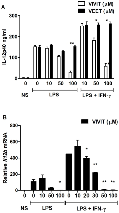 11R-VIVIT inhibits IL-12 p40 protein and mRNA expression. ( A ) Murine bone marrow-derived macrophages (BMDMs) were either untreated or pretreated with the indicated concentrations of 11R-VIVIT or the control peptide 11R-VEET for 1 h followed by LPS (100 ng/ml) alone or together with IFN-γ (10 ng/ml) for 24 h. IL-12 p40 protein secretion was assayed from supernatants by ELISA. ( B ) BMDMs were either untreated or pretreated with the indicated concentrations of 11R-VIVIT for 1 h followed by 1 h treatment with IFN-γ (10 ng/ml) prior to LPS (100 ng/ml) treatment for 4 h. Cells were harvested and total RNA was assayed for Il12b mRNA levels by real-time RT-PCR. Results were normalized with the respect to the levels of β-actin mRNA, and represent the mean ± SE for duplicate assays from three independent experiments. * p
