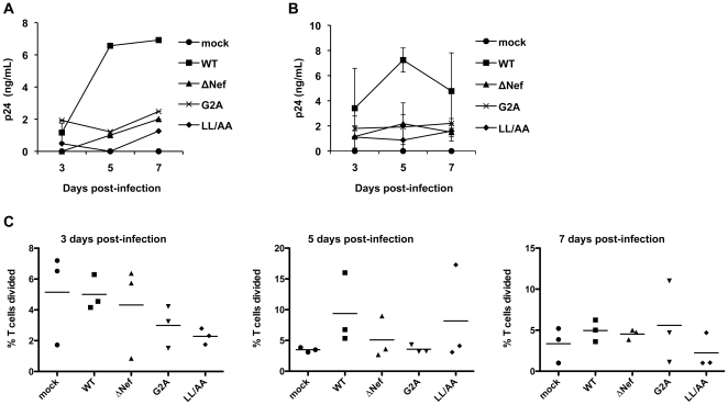 Nef promotion of HIV-1 replication in primary resting CD4 + T cells is associated with T cell proliferation. Resting CD4 + T cells were isolated from PBMCs using immunomagnetic particles and were cultured in the presence of IL-2 before and during HIV-1 infection. (A) Resting CD4 + T cells were cultured for 8 days and then infected with 5 ng p24 of replication-competent WT or Nef-mutated HIV-1. HIV-1 p24 production in the supernatants was measured at the times indicated. Representative data from one donor are shown. (B) Resting CD4 + T cells were cultured for 8 days and then infected with 5 ng p24 of WT HIV-1 or Nef-mutated viruses. HIV-1 p24 production in the supernatant was measured at the times indicated. Mean values of two independent experiments on different donors are shown. (C) CFSE-labeled resting CD4 + T cells (cultured for 8 days in the presence of IL-2) were mock infected or infected with 5 ng p24 of WT or Nef-mutated HIV-1. CD4 + T cell proliferation was measured by flow cytometry at the indicated times. Data represent three independent experiments using cells from three different donors. Each symbol in the plots represents a single experiment result and the horizontal bars in the plots indicate the mean values of three independent experiments. There is no statistically significant difference in T-cell proliferation among WT and Nef-mutated HIV-1 infected CD4 + T cells.