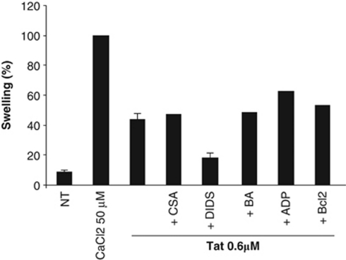 Tat-induced swelling in heart-isolated mitochondria. Isolated mouse heart mitochondria were exposed to full-length Tat[1-86] 0.6 μ M and mitochondrial swelling (measured as 90° light scattering at 545 nm) was monitored for 30 min. When indicated, mitochondria were preexposed for 5 min in the presence or absence of the following compounds: cyclosporin A (CsA; 30 μ M), ADP (1 mM), bongkrekic acid (BA; 50 μ M), Bcl-2 (400 nM), or DIDS (5 μ M). Then, mitochondria were incubated with Tat[1-86] (0.3 μ M; 30 min). Percentages of mitochondrial swelling (left panel) were calculated as described under Materials and Methods. Positive control was defined by the addition of 50 μ M CaCl 2 . Histograms represent mean values (±S.D.) of three independent experiments