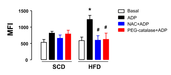 Effect of high-fat diet in the generation of intraplatelet reactive-oxygen species (ROS) . Male Wistar rats were fed with either a standard chow diet (SCD) or high-fat diet (HFD) during 10 weeks. Washed platelets (1.2 × 10 8 platelets/ml) from SCD or HFF rats were pre-incubated with N-acetylcysteine (NAC, 1 mM for 15 min) or PEG-catalase (1000 mU/ml, 15 min) and then stimulated with ADP (10 μM). Generation of ROS was quantified by flow cytometry using 2'-7'-dichloroflurescin diacetate (DCFH-DA). Results are shown as mean ± SEM values for n = 6-7. * P