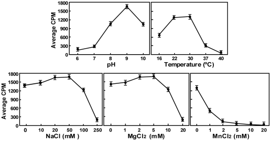 Optimal conditions for internal methylation for DENV-4 NS5 MTase. SPA-based methylation assays were performed using uncapped pppA-RNA substrate (representing the first 211 nt of DENV genome). The reaction mixtures were incubated for 1 h at room temperature. Optimal pH, temperature, NaCl concentration, MgCl 2 concentration, and MnCl 2 concentration were obtained by titrating individual parameter while keeping other parameters at the optimal levels. Average results and standard deviations were obtained from three independent experiments.