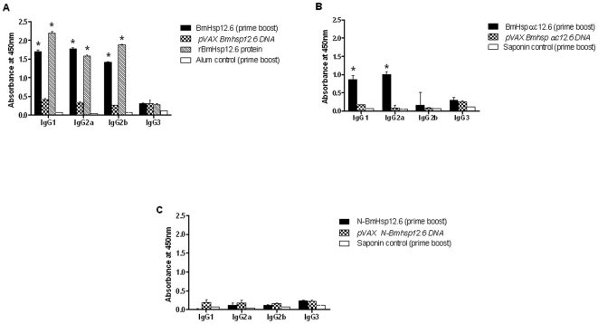 Isotype of anti-BmHsp12.6 IgG antibodies in the sera of mice. Mice were immunized with A ) BmHsp12.6, B ) BmHsp12.6αc or C ) N-BmHsp12.6 using homologous DNA vaccine regimen or a heterologous prime boost approach. Control mice were immunized with vector alone or adjuvant. Isotype specific ELISA was performed as described in the methods section. Bars represent mean O.D ± SD from five mice per group. * Significant (p